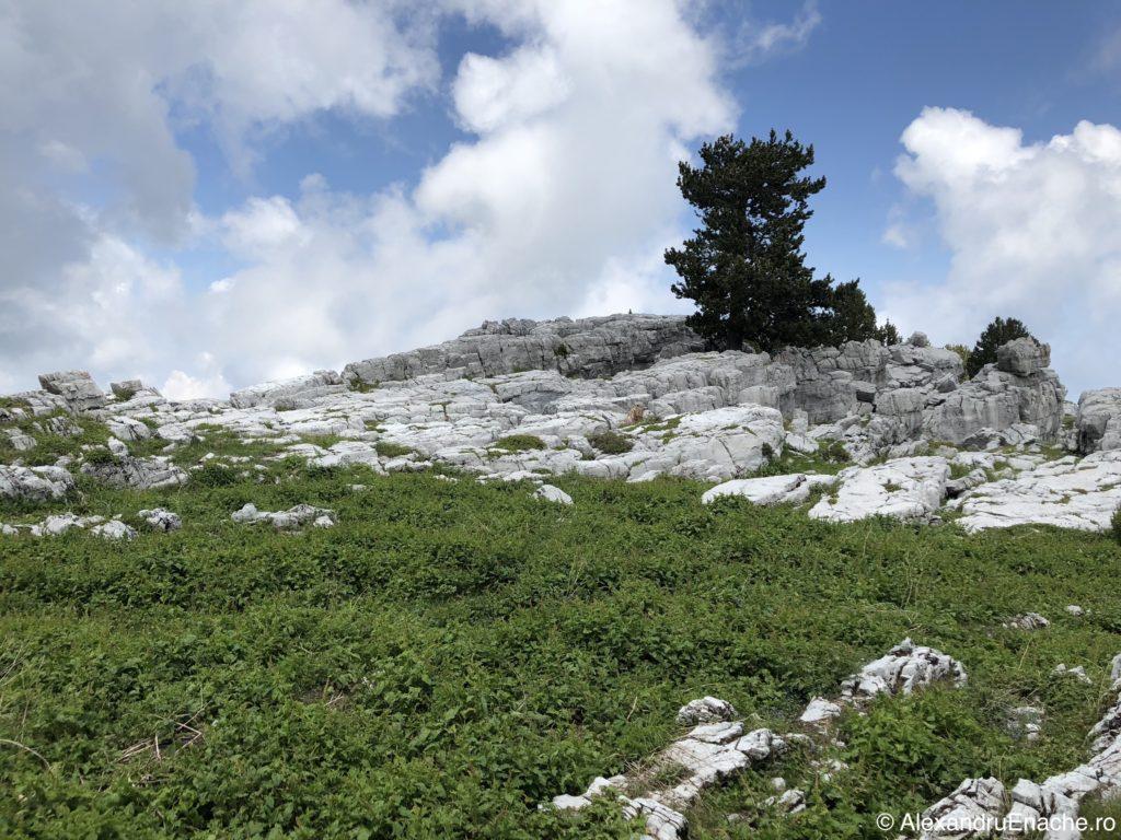 Road trip cu rulota - Mt Olimp1