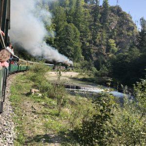 Plimbarea cu Mocănița si Cascada Cailor
